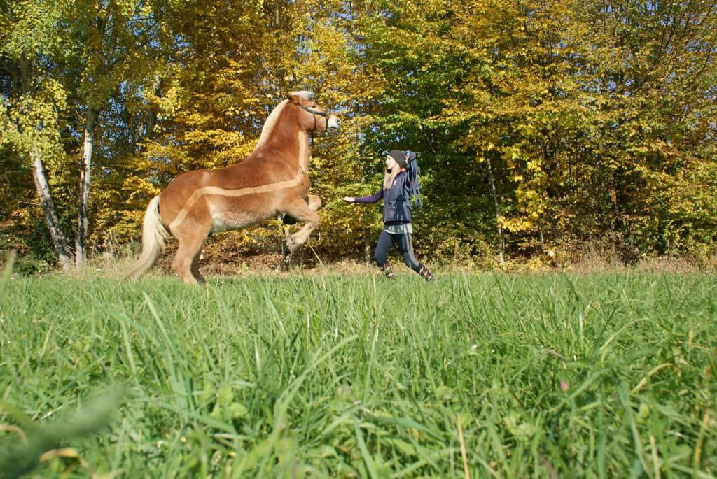 Julia und Filou beim Steigen