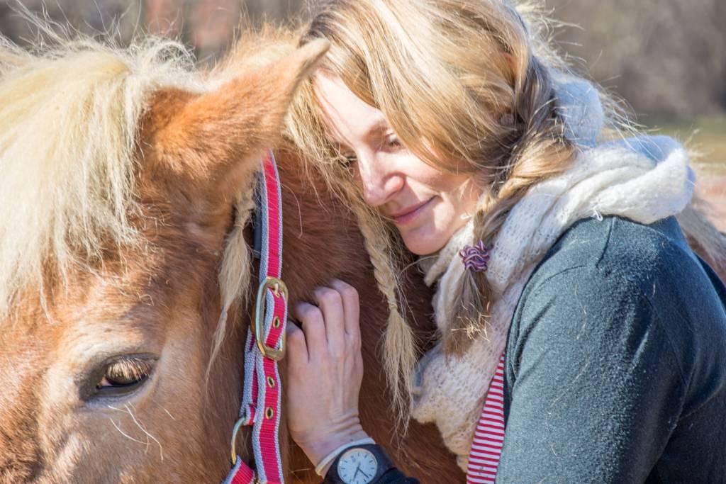 Schau genau hin und steh deinem Pferd mit einem kühlen Kopf zur Seite. Wenn du Verdacht hast, auf jeden Fall SOFORT den Tierarzt rufen und KÜHLEN. Foto: HaflingerAustria