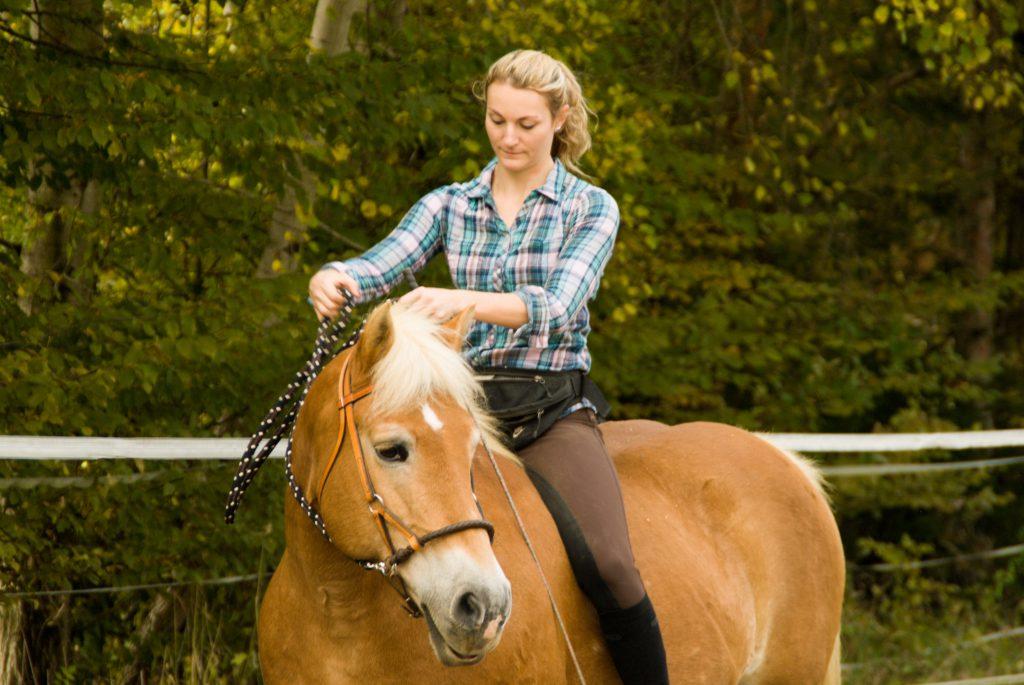 Konzentriert euch auf euer Pferd und lasst euch nicht austricksen ;) Foto: Haflinger Austria