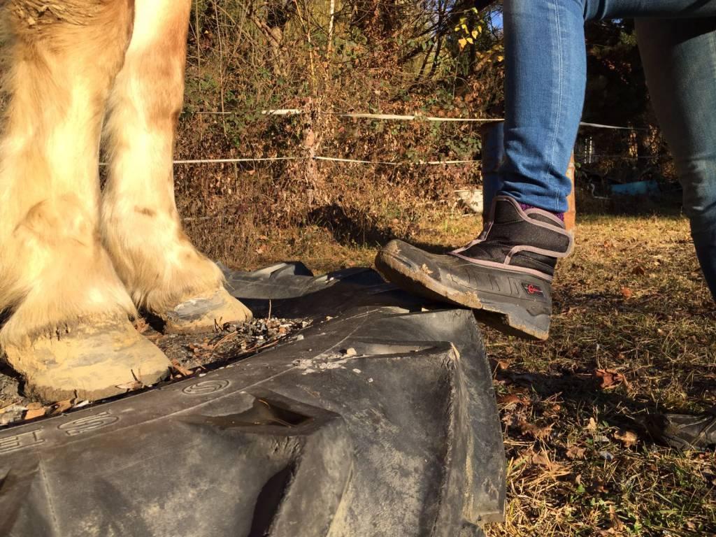 Schuhe lieber eine Nummer Größer nehmen, damit ihr warme Socken drunter tragen könnt. Foto: Haflinger Austria