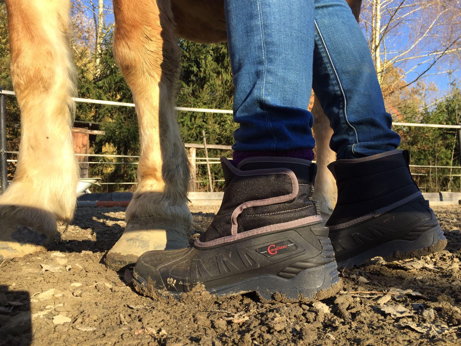 Im Test Kerbl Winterschuh Ottawa von Equusvitalis. Foto: Haflinger Austria