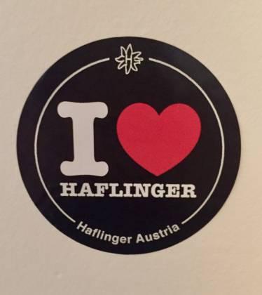 Haflinger Sticker New York Style