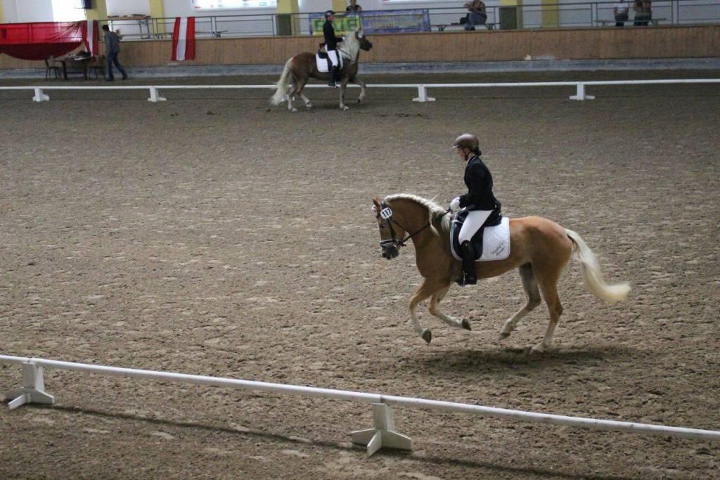 Nicole ist stolz auf die tolle Bewertung beim Bundeschampionat in Stadl Paura. Foto: Nicole N.