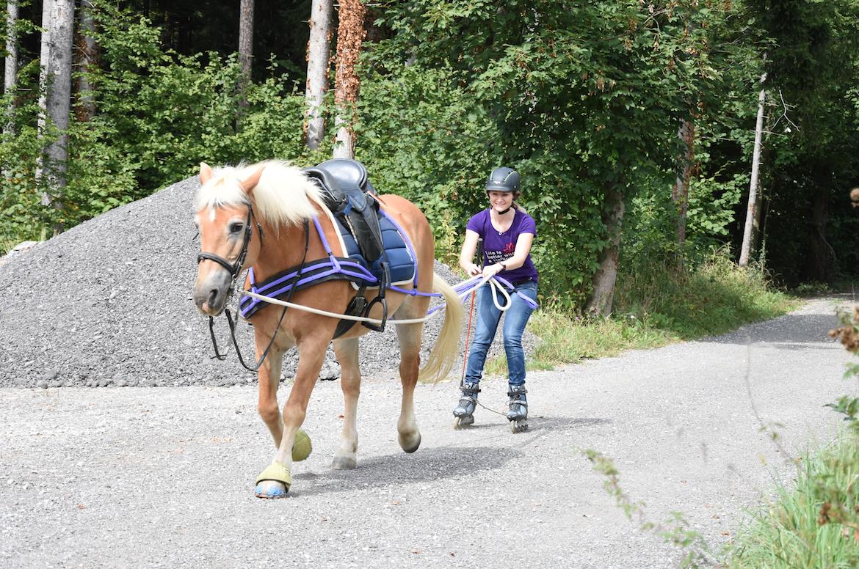 Wir lernten Inline-Jöring. Foto: Haflinger Austria