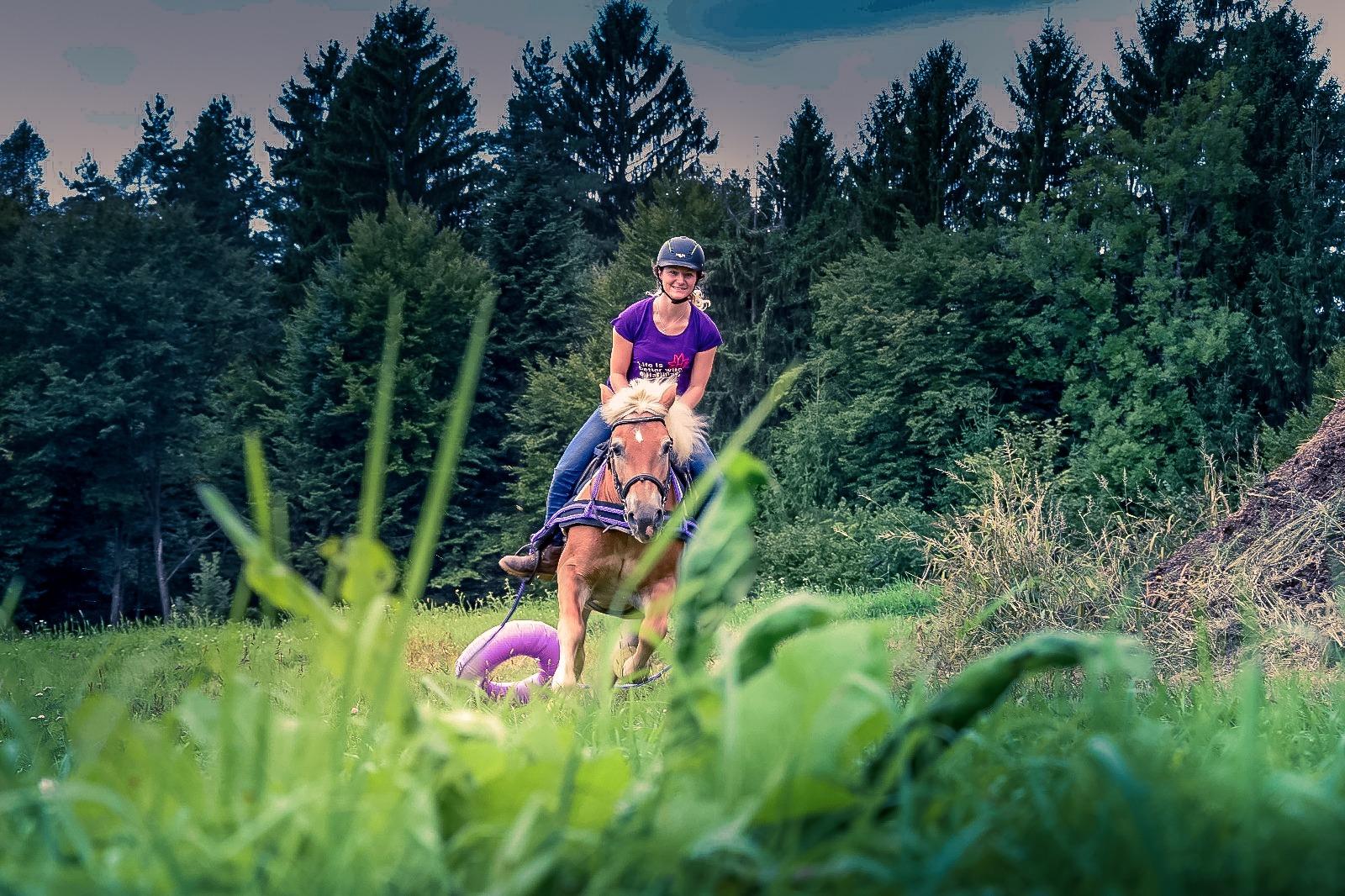 Schenke deinem Pferd in der Vorbereitungsphase die notwendige Zeit und Geduld! Umso besser wird's nachher klappen. Foto: Haflinger Austria