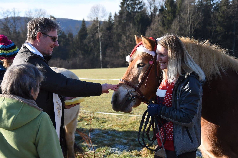 Wir wurden gesegnet. Foto: Haflinger Austria