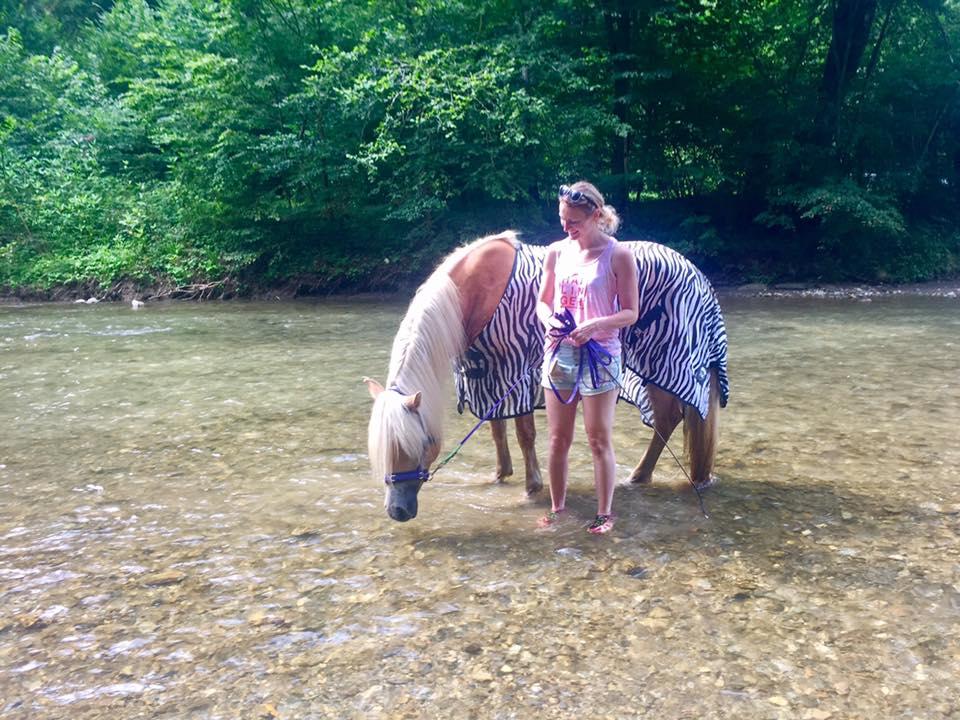 Mit dem Pferd schwimmen, baden oder plantschen. Foto: Haflinger Austria