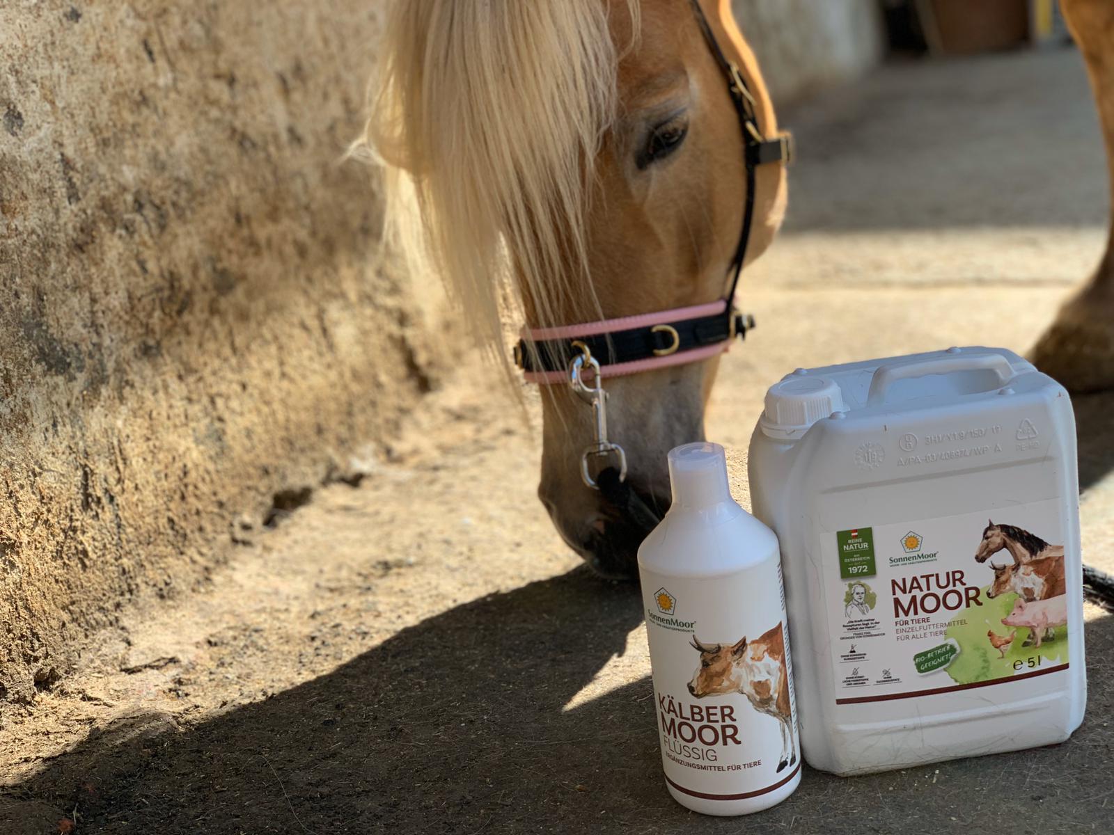 Mit den natürlichen Produkten von Sonnenmoor das Kotwasser in den Griff bekommen und unterstützen. Foto: Haflinger Austria